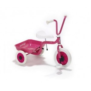 Tricycle - Pink - Liberty House Toys (40525)