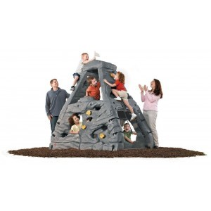 Climbing rock Kiddimanjaro - Step2 (782200)