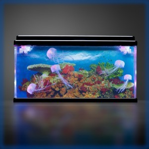 Jelly Fish Tank Large