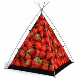 Strawberry Surprise Play Tent